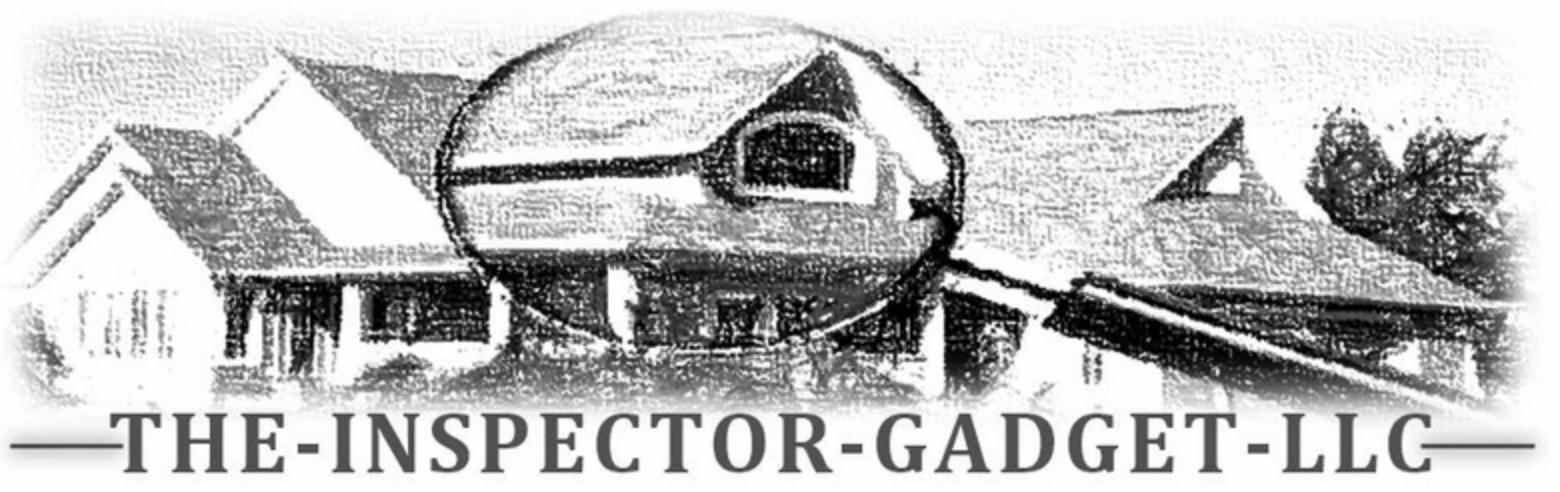 inspector-gadget-logo
